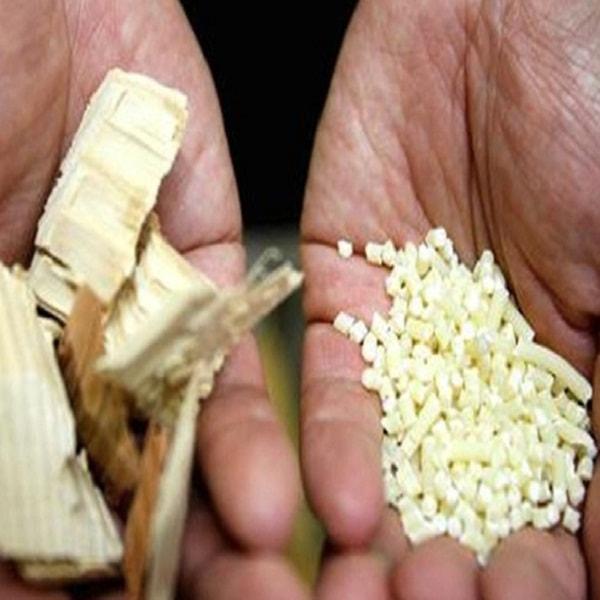 Nhật Bản nuôi dưỡng ý định làm phụ tùng ô tô bằng vật liệu gỗ